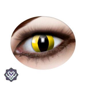 cat eye party lens