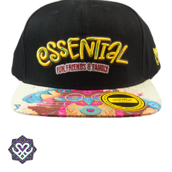 Essential snapback 'Fun, Friends & Family'